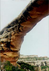 Dinosaur petroglyphs at natural bridges national monument figure 3 owachomo bridge publicscrutiny Gallery